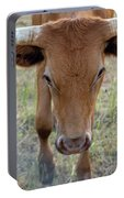 Close Up Of Longhorn Head Through Fence Portable Battery Charger