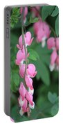 Close Up Of Peacock Pink Bleeding Hearts On Hunter Green Foliage 2 Portable Battery Charger