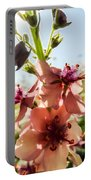 Close-up Of Pink Mullein Flowers Portable Battery Charger