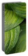 Close-up Of Raindrop On Green Leaves Portable Battery Charger