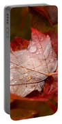 Close-up Of Raindrops On Maple Leaves Portable Battery Charger