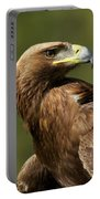 Close-up Of Sunlit Golden Eagle Looking Back Portable Battery Charger