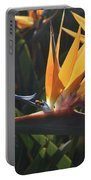 Close Up Photo Of A Bee On A Bird Of Paradise Flower  Portable Battery Charger