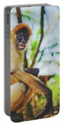 Close-up Portrait Of A Nicaraguan Spider Monkey Sitting And Looking At The Camera Portable Battery Charger