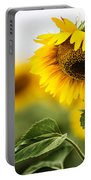 Close Up Single Sunflower In South Dakota Portable Battery Charger