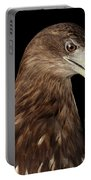 Close-up White-tailed Eagle, Birds Of Prey Isolated On Black Bac Portable Battery Charger