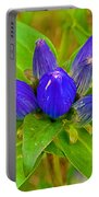 Closed Gentian Closeup In Campground In Saginaw-minnesota Portable Battery Charger
