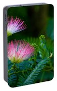 Closeup Of A Mimosa Bloom Portable Battery Charger