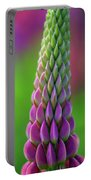 Closeup Of A Pink Lupine Portable Battery Charger