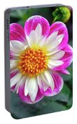 Closeup View Of A Dahlia That Was In The Cesky Krumlov Castle Gardens Portable Battery Charger