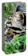 Clouded Leopard In The Grass Portable Battery Charger