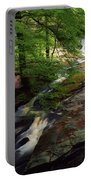 Cloughleagh Wood, Kilbride, Ireland Portable Battery Charger