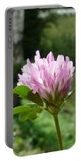 Clover 1 Portable Battery Charger