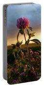 Clover At Sunset Portable Battery Charger by Viviana Nadowski