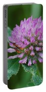 Clover In Dew Portable Battery Charger