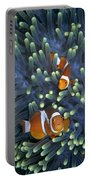 Clown Anemonefish Amphiprion Ocellaris Portable Battery Charger