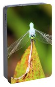 Clown Face Dragonfly Portable Battery Charger