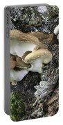 Cluster Of Fungi Portable Battery Charger