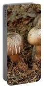 Cluster Of Mushrooms Portable Battery Charger