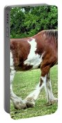 Clydesdale Portable Battery Charger