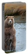 Coastal Brown Bears On Salmon Watch Portable Battery Charger