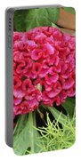 Cockscomb Flower Portable Battery Charger