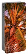 Coconut Sunset Portable Battery Charger