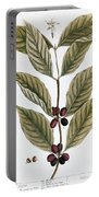 Coffee Plant, 1735 Portable Battery Charger