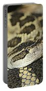 Coiled Rattlesnake Portable Battery Charger