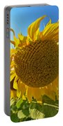 Colby Farms Sunflower Field Newbury Ma Ball Of Fire Portable Battery Charger