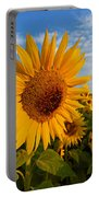 Colby Farms Sunflower Field Newbury Ma Sunrise Portable Battery Charger