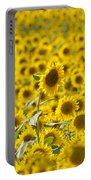 Colby Farms Sunflower Field Newbury Ma Portable Battery Charger