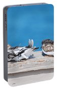 Cold Birds Portable Battery Charger