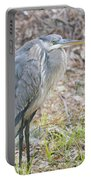 Cold Blue Heron Portable Battery Charger