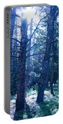Cold Mountain Light Portable Battery Charger