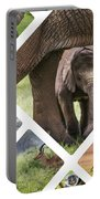 Collage Of Animals From Tanzania Portable Battery Charger