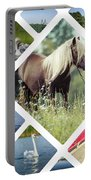 Collage Of Suwalki  Portable Battery Charger