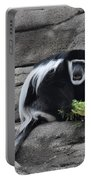 Colobus Monkey Portable Battery Charger