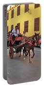 Colombia Carriage Portable Battery Charger