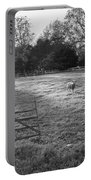 Colonial Sheep In Pasture Portable Battery Charger