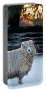 Colonial Sheep In Winter Portable Battery Charger