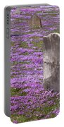 Colonial Tombstones Amidst Graveyard Phlox Portable Battery Charger by John Stephens