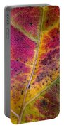 Color And Texture Portable Battery Charger