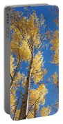 Colorado Aspen Portable Battery Charger