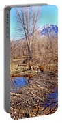 Colorado Beaver Ecosystem Portable Battery Charger