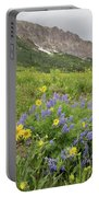 Colorado Color #4 Portable Battery Charger