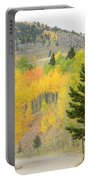 Colorado Colors Portable Battery Charger