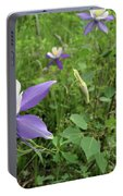 Colorado Columbine On Pikes Peak Portable Battery Charger