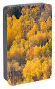 Colorado High Country Autumn Colors Portable Battery Charger