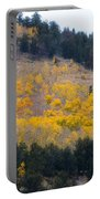 Colorado Mountain Aspen Autumn View Portable Battery Charger